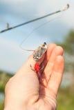 Amorce pour les poissons prédateurs contagieux à disposition sur le fond de l'herbe Images libres de droits