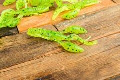 Amorces de gabarit de pêche Photo stock