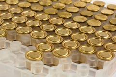 Amorces emballées de fusil de chasse Photo stock