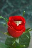 Amore & fiori dei diamanti Fotografie Stock