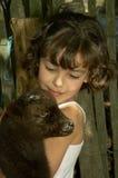 Amore animale Fotografia Stock