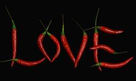 Amore caldo Immagini Stock
