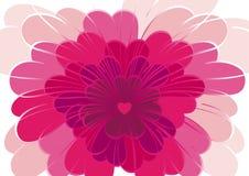 Amore del fiore Fotografie Stock Libere da Diritti