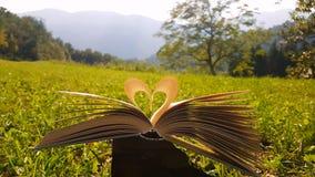 Amore del libro fotografie stock libere da diritti