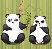 Amore del panda Immagine Stock