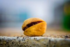 Amore del pistacchio fotografie stock