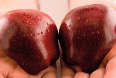 amore della mela Fotografia Stock