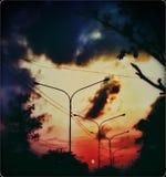 Amore della natura Fotografia Stock Libera da Diritti