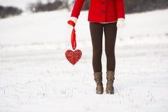 Amore della neve Immagine Stock