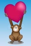 Amore della scimmia Fotografia Stock