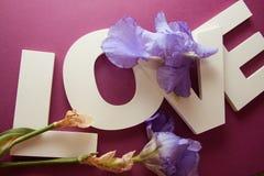 AMORE delle lettere con i fiori dell'iride immagini stock