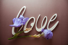 AMORE delle lettere con i fiori dell'iride immagini stock libere da diritti