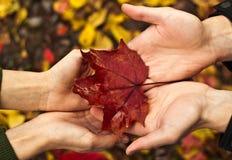 Amore di autunno fotografie stock