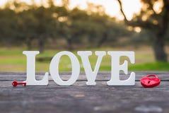 Amore di parola e un lucchetto del cuore Fotografie Stock