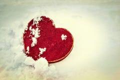 Amore freddo Fotografia Stock Libera da Diritti