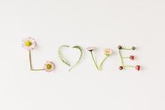 Amore naturale Concetto di amore Disposizione piana Fotografie Stock Libere da Diritti