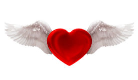 Amore nell'isolato dell'aria su bianco Fotografie Stock