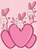 Amore pazzo di amore del coniglio Fotografia Stock