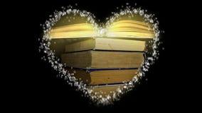 Amore per i libri alle classi stock footage