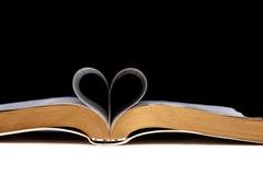 Amore per leggere libro Immagini Stock
