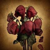 Amore perso royalty illustrazione gratis