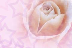 Amore Rosa del biglietto di S. Valentino immagini stock