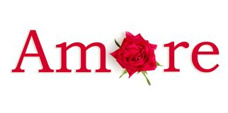 Amore rosso Stock Photography