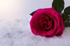 Amore St Giorno del ` s del biglietto di S Bei cuori Fotografia Stock