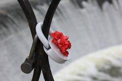 Amore sul fiume Immagine Stock Libera da Diritti