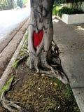 Amore in un albero Fotografia Stock
