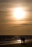 Amore in una spiaggia Immagine Stock