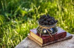 Amoreira e pilha deliciosas de livros no jardim Bacia de amoreira madura preta no fundo do jardim do verão fotografia de stock royalty free