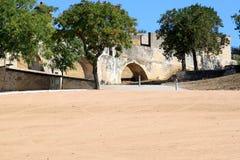 amoreiraakveduktelvas gammala portugal Arkivfoto