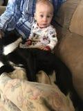 Amores novos do menino no gato novo fotografia de stock royalty free