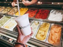 Amorino yogurt drink and colorful gelato in Malta royalty free stock image