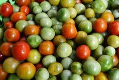 Amoroso tomato, Solanum lycopersicum Amoroso Stock Image