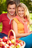 Amorous dates Royalty Free Stock Image