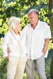 Amorous senior marriage Stock Images