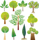 Amostras da árvore Imagem de Stock