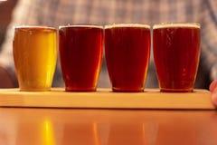 Amostras da cerveja do ofício do gosto de um voo fotos de stock royalty free