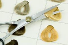 Amostras da cor do cabelo Fotos de Stock Royalty Free