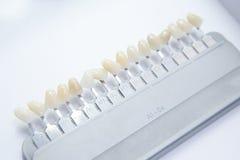 Amostras da cor dos dentes falsos Imagens de Stock