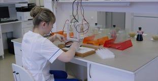 Amostras de alimento fêmeas novas dos testes do nutricionista no laboratório Pesquisador fêmea que trabalha em um computador em u vídeos de arquivo