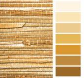 Amostras de folha da paleta da escala de cores Imagem de Stock Royalty Free