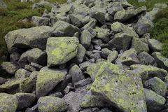 Amount of boulder with moss in Low Tatras mountains Stock Photo