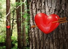 Amour à la première vue Photos libres de droits