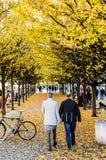Amour à Prague Photo stock