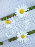 Amour Photo stock