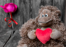 Amour Photographie stock libre de droits
