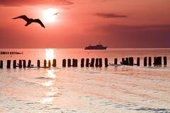 Amour au bord de la mer. Images stock